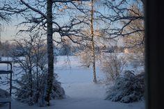 Winter from outside my window