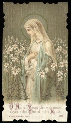 OLD HOLY CARD OF ST MARY