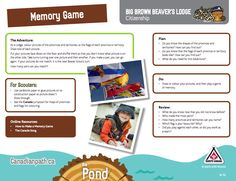Beaver Lodge, Beaver Scouts, Big Brown, Beavers, Memory Games, Citizenship, Colorful Pictures, Cubs, Youth