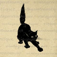 Printable Image Black Cat Graphic Digital by VintageRetroAntique