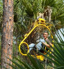 Cypress Canopy Cycle by Florida EcoSafaris at Forever Florida.  Here it is!!!  a zip line that doesn't scare me and right here in Florida.