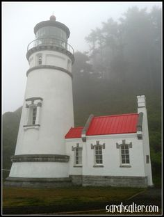 Heceta Head Lighthouse in Florence, OR on a foggy August afternoon. As the great-great-granddaughter of a Cape Lookout (NC) Lighthouse keeper, I'm particularly drawn to lighthouses, and SO FAR, this one's my favorite of the West Coast lighthouses. But I have A LOT more to see. And no, while I was there, I did not see Rue, the Gray Lady. :-)