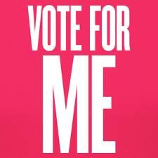 I need 4 reasons why it's important to vote.?