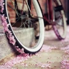 """""""Forgiveness is the fragrance the violet sheds on the heal that has crushed it"""" (Mark Twain)"""