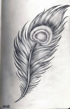 Hell P Art - Peacock feather by Hell2theP