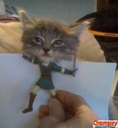 LOL Kitty Link