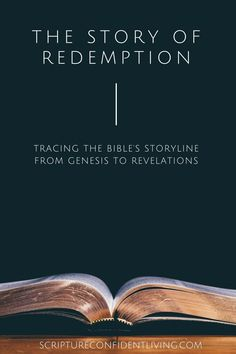 The Redemption story in each book of the Bible Now Faith Is, Walk By Faith, Christian Women, Christian Living, Light Of Christ, Bible Resources, Inspirational Verses, Bible Study Tools, Christian Encouragement