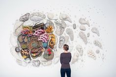 This large-scale ceramic coral reef sculptural installation is the third in Courtney Mattison's Our Changing Seas series. It was completed in March 2014 for Alumni Invitational 4 – its debut exhibition at the Tang Museum at Skidmore College in Saratoga Sp…