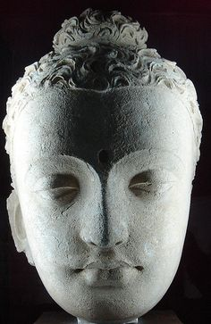 Jaulian Buddhist head.One of the Buddhist heads recovered from the Jaulin site in Taxila, Pakistan and on display at the Taxila museum. Sadly this fellow is missing an ear. In the 2nd-4th century the Kushana Empire included modern day Pakistan with a number of Buddhist temples and schools in the Taxila valley.
