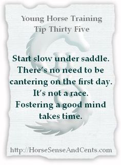 Starting slow will help your horse learn faster with #YoungHorseTraining strategies. Try it - you'll like it :-).