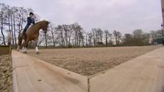 Dressage Training with Carl Hester and Charlotte Dujardin
