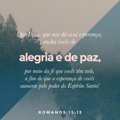 http://bible.com/211/rom.15.13.NTLH