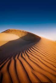 Image result for lancelin sand dunes