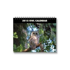 SOLD! Owls Calendar 2015 by FunNaturePhotography. #owls #calendar http://www.zazzle.com/funnaturephotography*