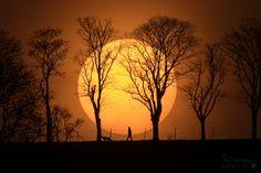 Sole, uomo cane ManDogSun_Hackmann_1600.jpg (1600×1066)