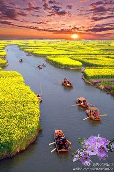 China Travel Inspiration - Canola Fields, Xinghua, China photo via amanda Places Around The World, Travel Around The World, Places To Travel, Places To See, Beautiful World, Beautiful Places, Amazing Places, Beautiful Scenery, Beautiful Sunset