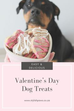 11 Best Homemade Dog Treats for Valentine's Day - PetsPositivity Valentines Day Dog, Valentine Treats, Diy Dog Treats, Homemade Dog Treats, Easy Dog Treat Recipes, Dog Food Recipes, Peanut Butter Dog Treats, Dog Bakery, Dog Biscuits