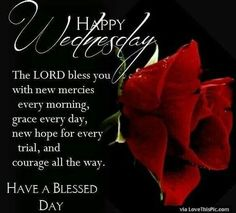 Happy Wednesday Have A Blessed Day good morning wednesday hump day wednesday quotes good morning quotes happy wednesday good morning wednesday wednesday quote happy wednesday quotes beautiful wednesday quotes wednesday quotes for friends and family