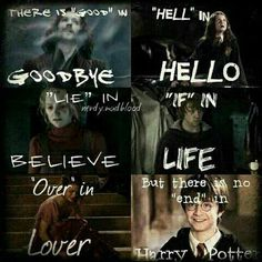 So basically, Harry Potter is life, Harry Potter is love.