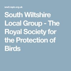 South Wiltshire Local Group - The Royal Society for the Protection of Birds