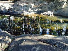 reflection*