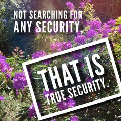 Not searching for any security that is the true security in life. Life keeps changing so truly what can you hold onto in life? When you follow perfect wisdom freedom to challenge life with an open humble loving heart can appear. #quotestoliveby #buddha #kindness #humble #love #free