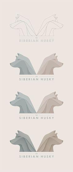 Siberian Husky - Yoga Perdana