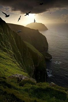 Fulmars fly in the shadow of the UK's tallest cliff, with the island os Soay in the background, St Kilda, Scotland || Marcus McAdam Photography