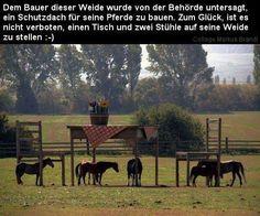 Pferdeunterstand