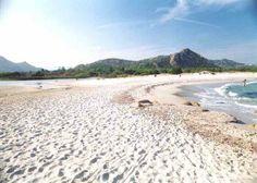 Spiagge Sardegna: Berchida