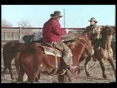 From the Texas high plains of the Pitchfork Ranch to mountain country of the JC Ranch in Wyoming, ride along with cowboys as they explain their daily life in this vintage film from 1977 featuring the music of Red Steagall.
