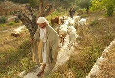 Nazareth Village in Israel/Palestine has much to celebrate in its tenth year of existence. Jewish families on Shabbat