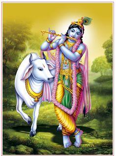 Hare Krishna, Krishna Art, Krishna Lila, Lord Krishna Hd Wallpaper, Lord Vishnu Wallpapers, Shree Krishna Wallpapers, Radha Krishna Pictures, Lord Krishna Images, Sri Krishna Photos