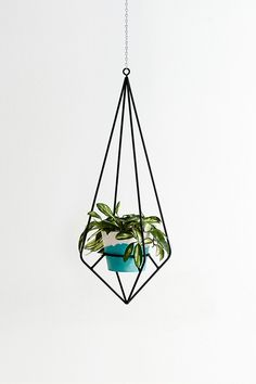 The Capra Designs Diamond Plant Hanger is made from powder coated steel. It sits perfectly as a feature inside or outside of your home and will add a touch of classic elegance.