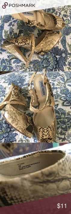 Steve Madden snake skin heels Steve Madden size 7 snake skin heels Steve Madden Shoes Heels
