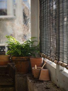 Rullgardin 'Svart bambu'  I  Zetas Trädgård