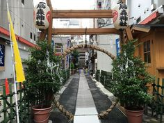 30 de junio Nagoshi Ooharae en Karasumori Jinja Tokio | daytrip.photo