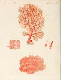 Porte-feuille instructif et amusant pour la jeunesse :. Àvienne,Chez Antoine Pichler,1807.. biodiversitylibrary.org/page/1807049