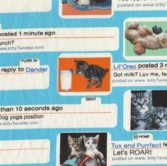 Telas diseñadores EEUU - chat cat - hecho a mano por La-Retalera en DaWanda