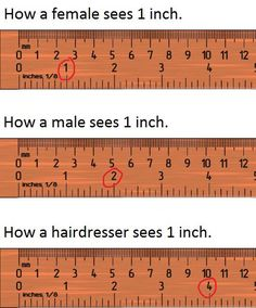 True Story.  And hasn't everyone had a haircut to prove it!