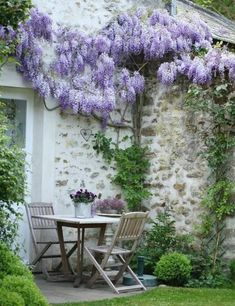 60 Beautiful Small Flowering Trees Front Yards Design IDeas