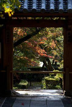 京都 竜安寺 Ryoan-ji Temple garden, Kyoto