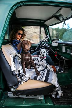 Adorable puppies enjoyin a ride! Cute Puppies, Cute Dogs, Dogs And Puppies, Doggies, Dog Photoshoot, I Love Dogs, Puppy Love, Vw T3 Camper, Animals And Pets