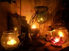 voiceofnature: My little Earth Hour