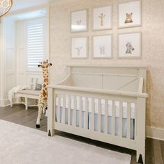 Project Nursery - Pr