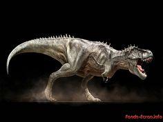 dans fond ecran dinosaure thumb_big_normal_cccc3c4e60a85d677a9b0e6b7d6d0671