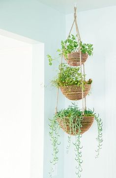 This post contains the most inexpensive decorative DIY hanging planters. These planters will definitely make your indoor garden astonishing. Diy Hanging Planter, Indoor Planters, Diy Planters, Planter Ideas, Basket Planters, Plants Indoor, Indoor Hanging Baskets, Hanging Pots, Hanging Baskets Kitchen