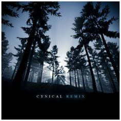 Cynical Remix - 3D album cover art rendered with Terragen 3.