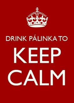 Drink Pálinka to Keep calm:) Hungarian Cuisine, Hungarian Recipes, Hungarian Food, Keep Calm Quotes, Don't Speak, Budapest Hungary, Just Go, Culture, Drinks