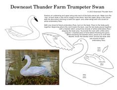 The Elegant Trumpeter Swan A reader recently requested a trumpeter swan – the first such request I've received. I loved the idea and had fun coming up with the design for this double-sided felt swan ornament. Felt Patterns, Bird Patterns, Craft Patterns, Crafts To Do, Felt Crafts, Easter Crafts, Trumpeter Swan, Bird Template, Bird Applique